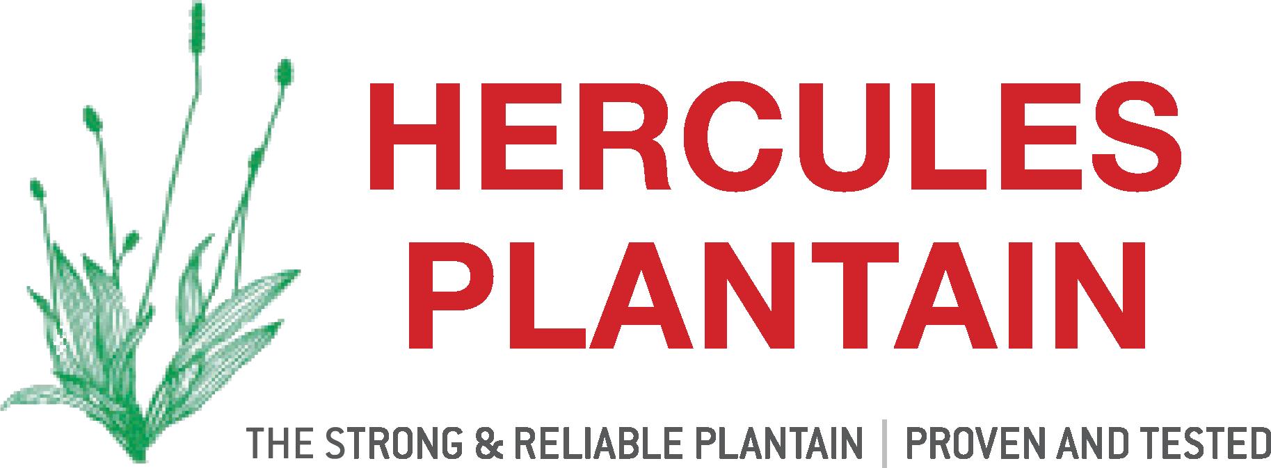 Hercules Plantain